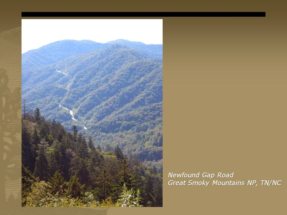 Newfound Gap Road Great Smoky Mountains NP, TN/NC