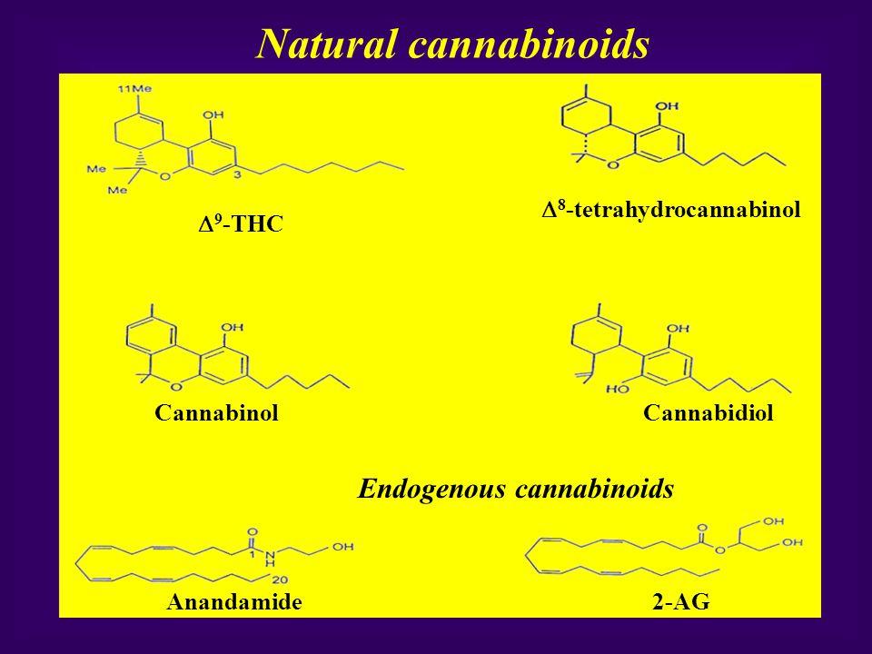 Natural cannabinoids Endogenous cannabinoids  9 -THC  8 -tetrahydrocannabinol CannabinolCannabidiol Anandamide2-AG