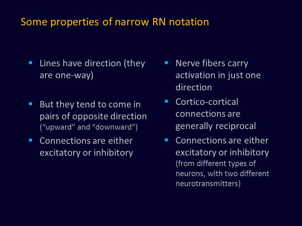 Some properties of narrow RN notation  Lines have direction (they are one-way)  But they tend to come in pairs of opposite direction ( upward and downward )  Connections are either excitatory or inhibitory  Nerve fibers carry activation in just one direction  Cortico-cortical connections are generally reciprocal  Connections are either excitatory or inhibitory (from different types of neurons, with two different neurotransmitters)