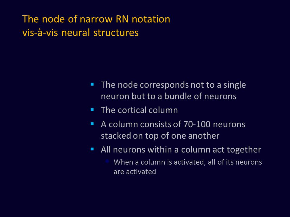 The node of narrow RN notation vis-à-vis neural structures  The node corresponds not to a single neuron but to a bundle of neurons  The cortical column  A column consists of 70-100 neurons stacked on top of one another  All neurons within a column act together When a column is activated, all of its neurons are activated