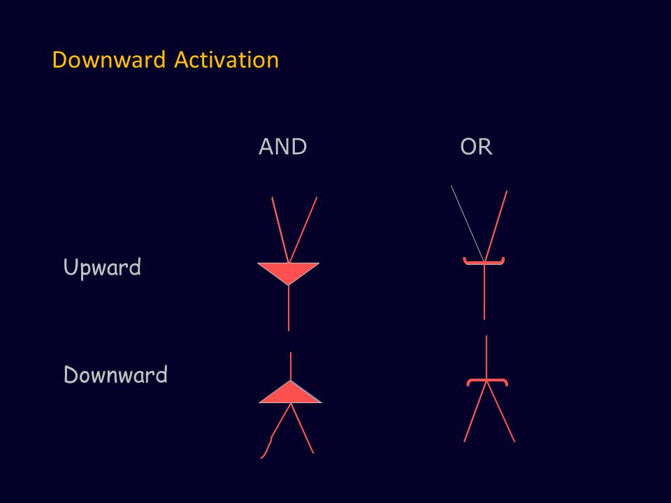 Downward Activation ANDOR Upward Downward
