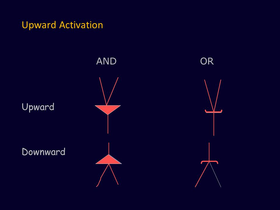 Upward Activation AND OR Upward Downward