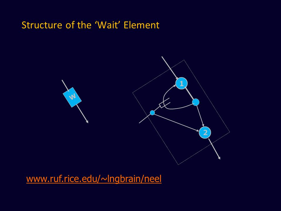 Structure of the 'Wait' Element W 1 2 www.ruf.rice.edu/~lngbrain/neel