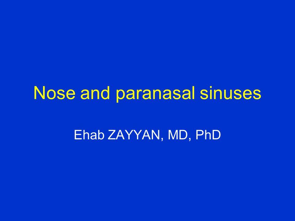 Nose and paranasal sinuses Ehab ZAYYAN, MD, PhD
