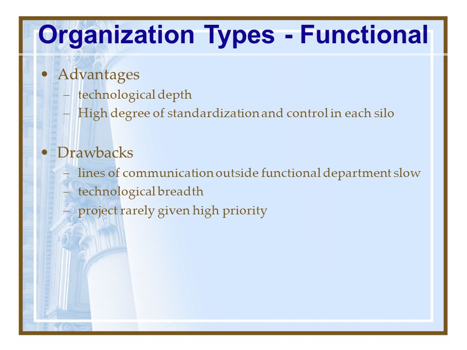 Project control CEO EngineeringManufacturingHuman Resources Finance Staff Organization Types - Functional