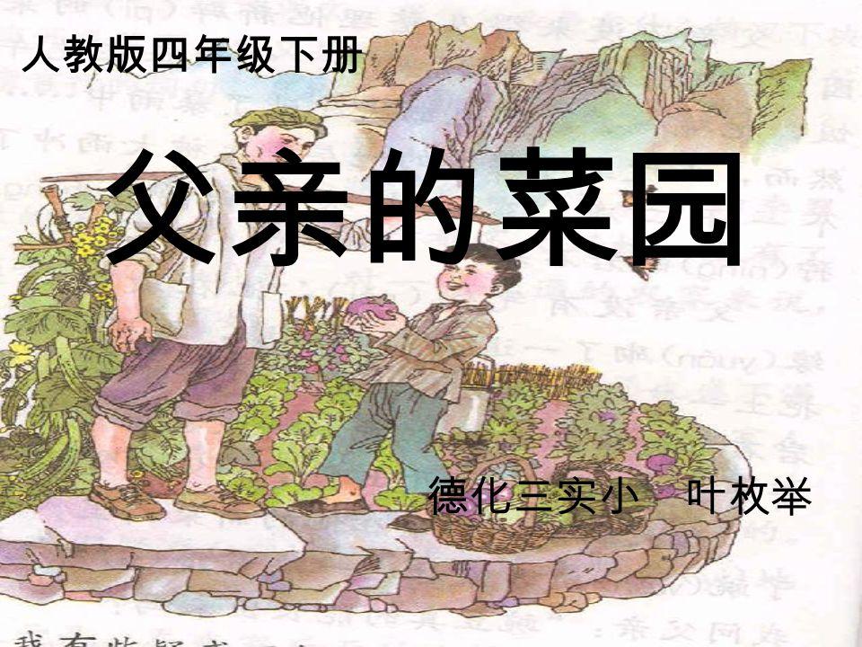 父亲的菜园 德化三实小 叶枚举 人教版四年级下册