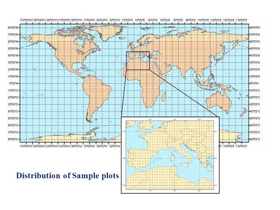Distribution of Sample plots