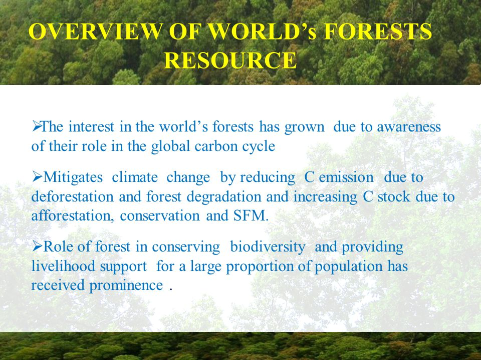  The interest in the world's forests has grown due to awareness of their role in the global carbon cycle  Mitigates climate change by reducing C emi