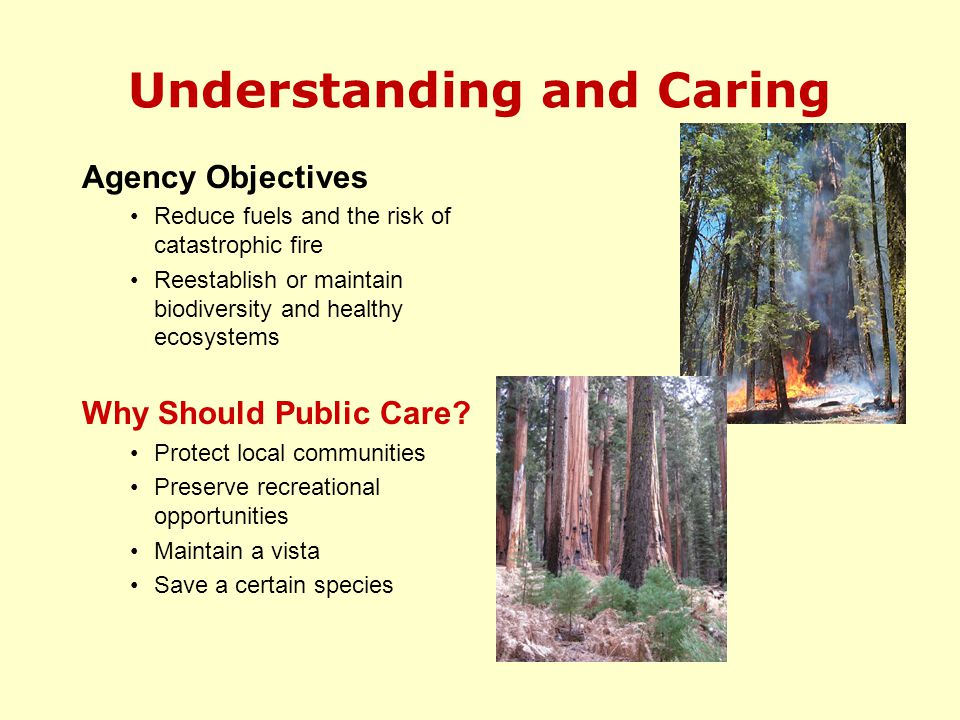 Understanding and Caring Agency Objectives Reduce fuels and the risk of catastrophic fire Reestablish or maintain biodiversity and healthy ecosystems Why Should Public Care.