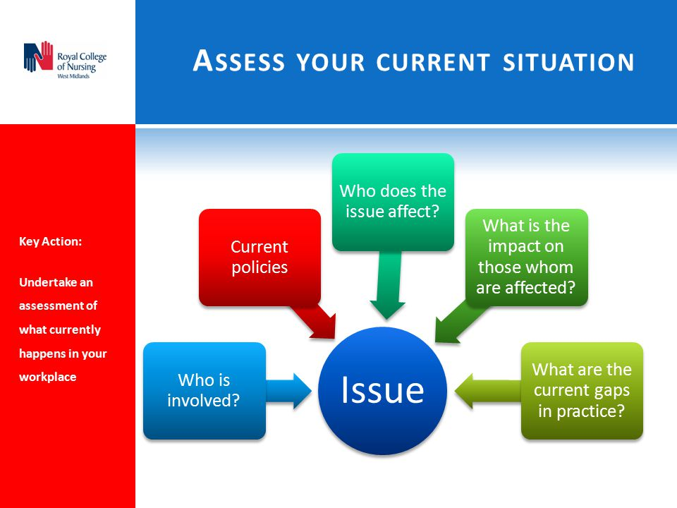 A SSESS YOUR CURRENT SITUATION Key Action: Undertake an assessment of what currently happens in your workplace Issue Who is involved.