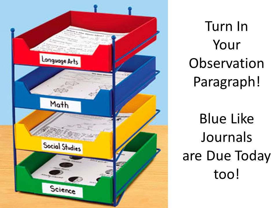 Turn In Your Observation Paragraph! Blue Like Journals are Due Today too!