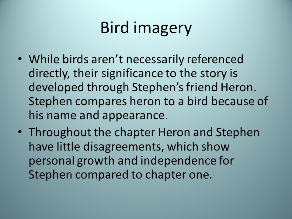 Bird imagery While birds aren't necessarily referenced directly, their significance to the story is developed through Stephen's friend Heron.
