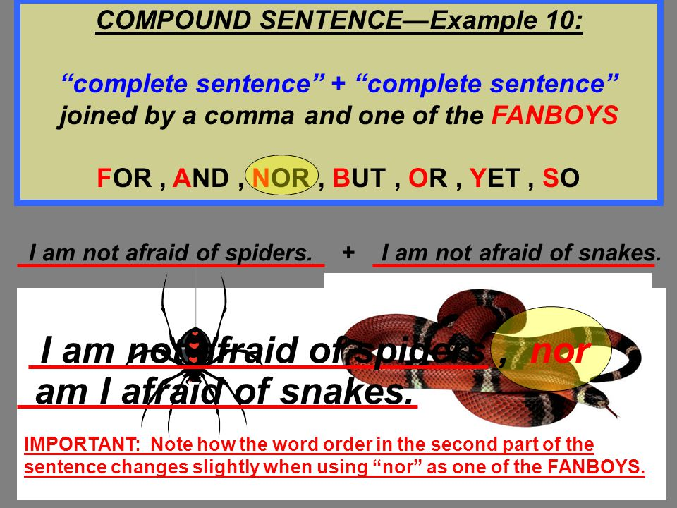 """Billy has a high fever. + He also has a sore throat. Billy has a high fever, and he also has a sore throat. COMPOUND SENTENCE—Example 9: """"complete sen"""