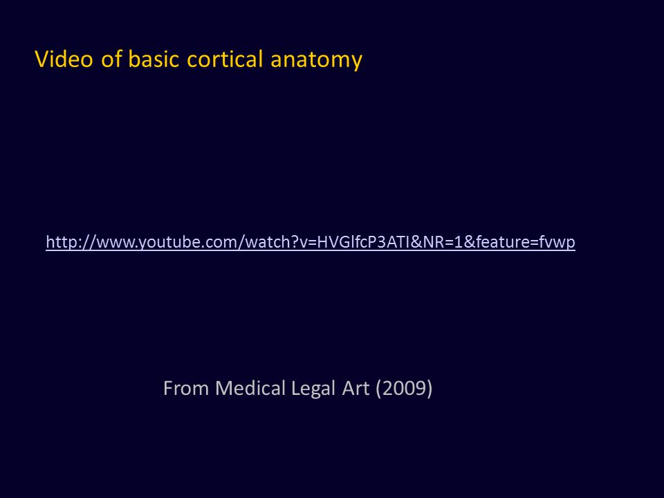 Video of basic cortical anatomy http://www.youtube.com/watch?v=HVGlfcP3ATI&NR=1&feature=fvwp From Medical Legal Art (2009)