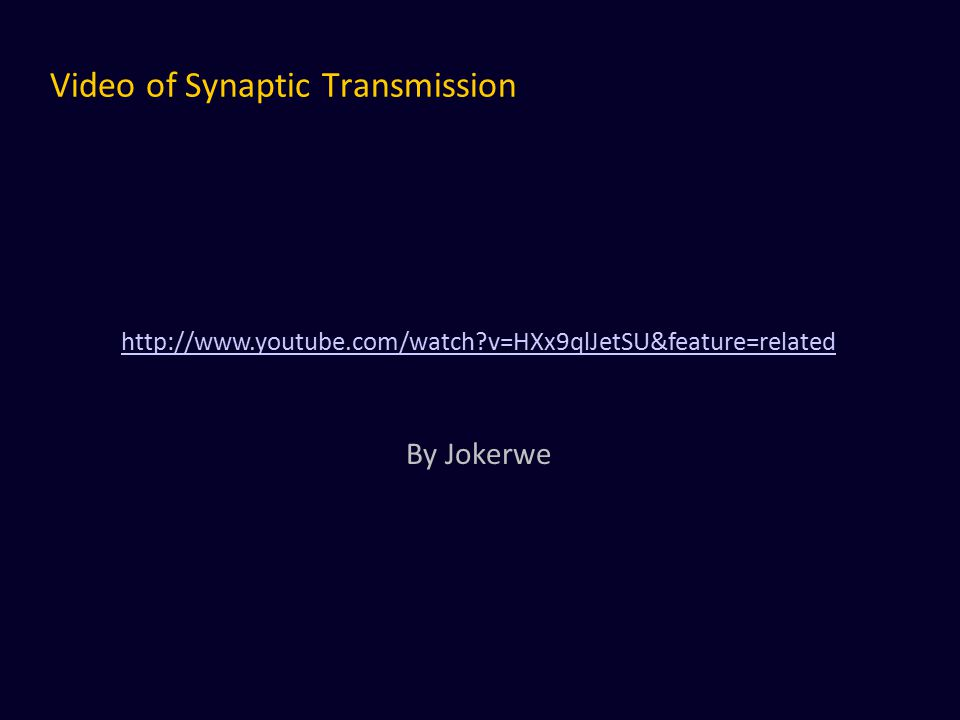 Video of Synaptic Transmission http://www.youtube.com/watch?v=HXx9qlJetSU&feature=related By Jokerwe
