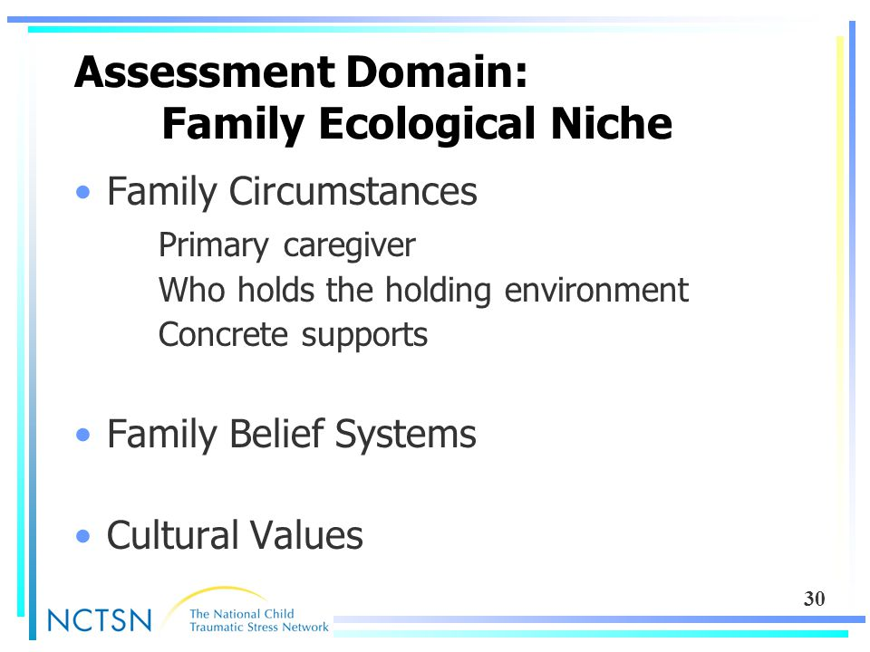 30 Assessment Domain: Family Ecological Niche Family Circumstances Primary caregiver Who holds the holding environment Concrete supports Family Belief