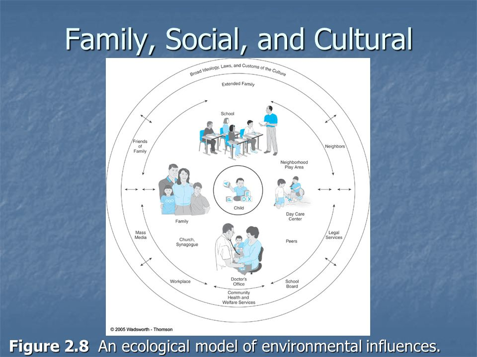 Family, Social, and Cultural Influences (cont.) Figure 2.8 An ecological model of environmental influences.