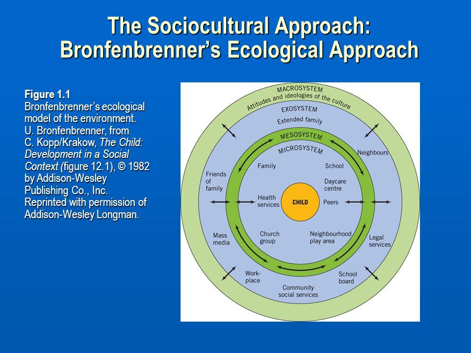 Figure 1.1 Bronfenbrenner's ecological model of the environment. U. Bronfenbrenner, from C. Kopp/Krakow, The Child: Development in a Social Context (