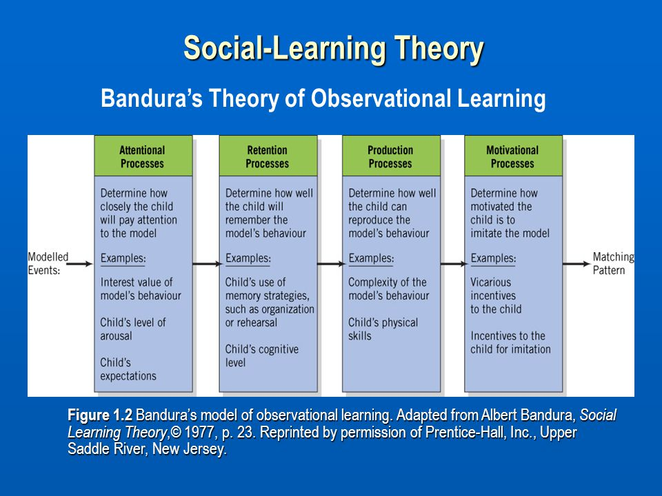Figure 1.2 Bandura's model of observational learning. Adapted from Albert Bandura, Social Learning Theory,© 1977, p. 23. Reprinted by permission of Pr