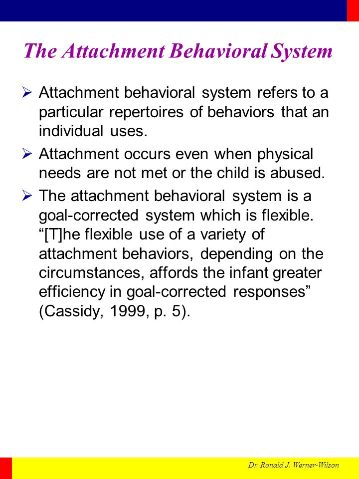 Dr. Ronald J. Werner-Wilson The Attachment Behavioral System  Attachment behavioral system refers to a particular repertoires of behaviors that an in