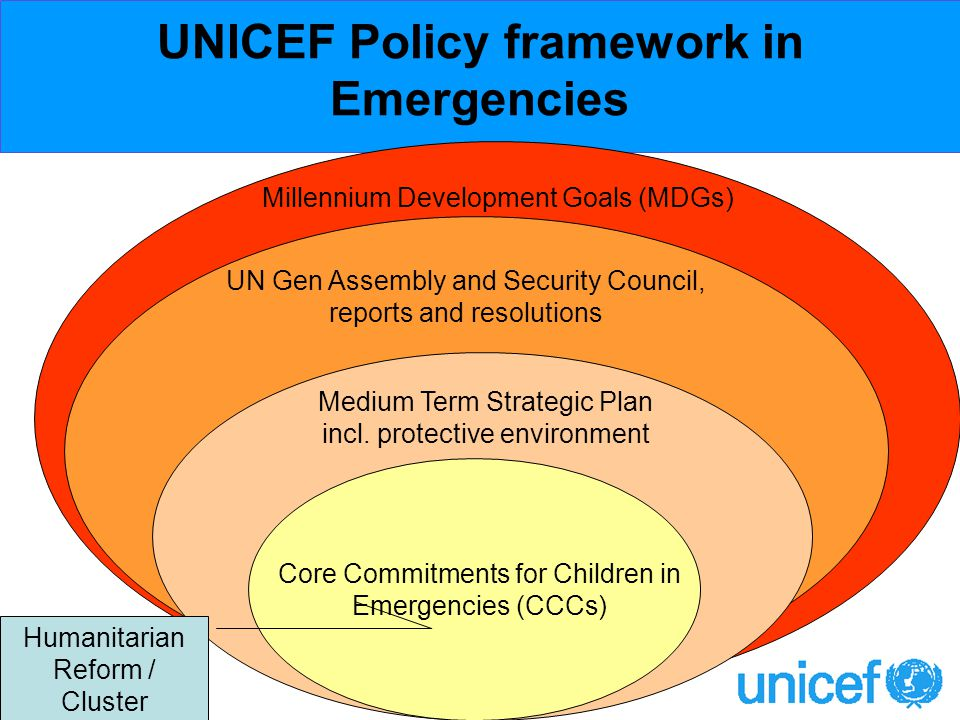 Millennium Development Goals (MDGs) UN Gen Assembly and Security Council, reports and resolutions Medium Term Strategic Plan incl.