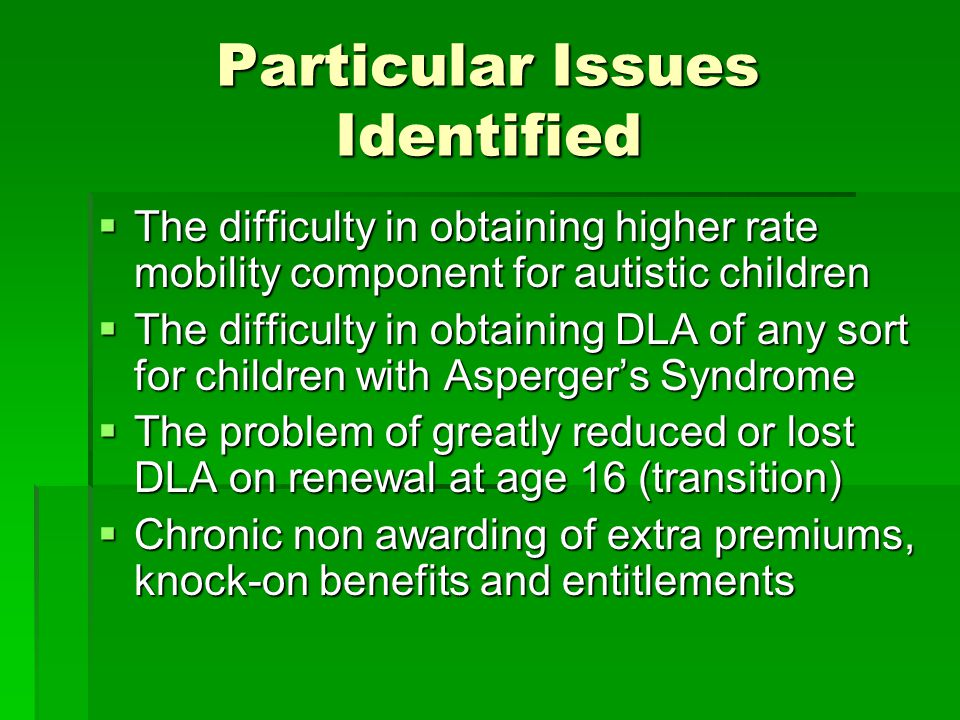Particular Issues Identified  The difficulty in obtaining higher rate mobility component for autistic children  The difficulty in obtaining DLA of a