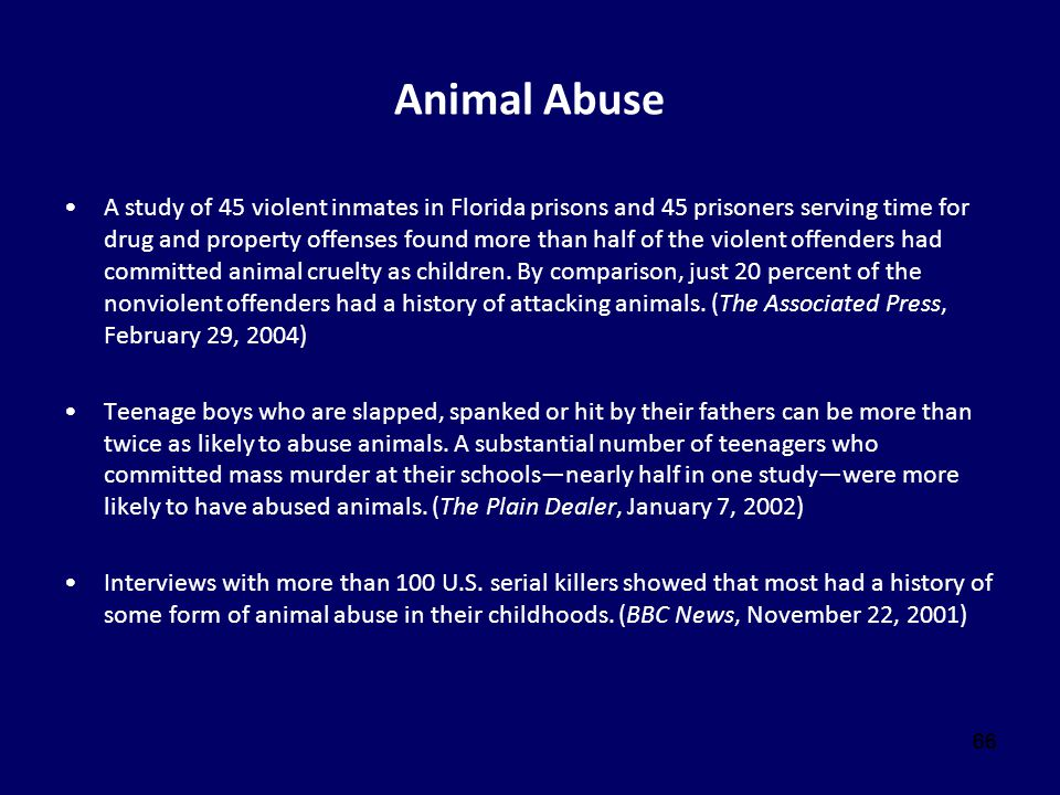 66 Animal Abuse A study of 45 violent inmates in Florida prisons and 45 prisoners serving time for drug and property offenses found more than half of