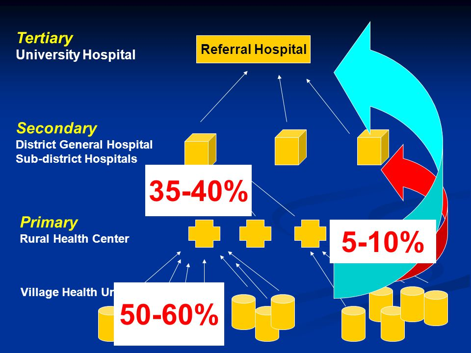 Referral Hospital Tertiary University Hospital Secondary District General Hospital Sub-district Hospitals Primary Rural Health Center Village Health U
