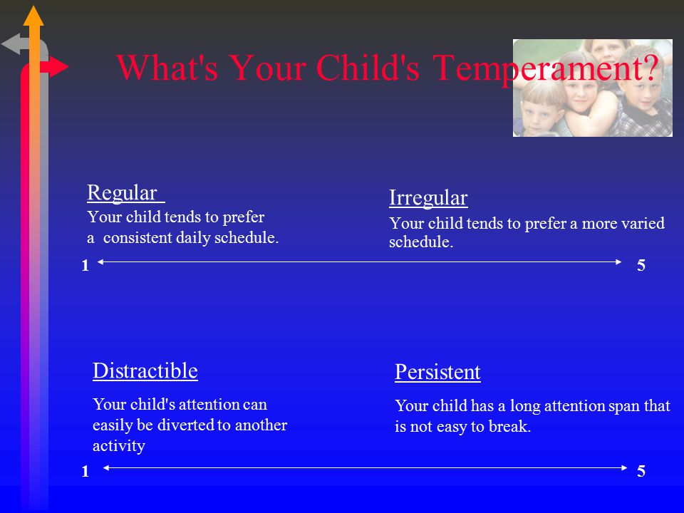 What s Your Child s Temperament. Regular Your child tends to prefer a consistent daily schedule.