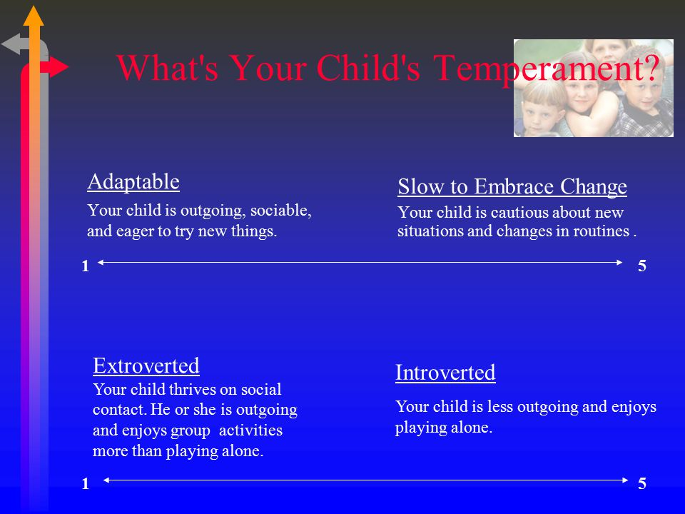 What s Your Child s Temperament.