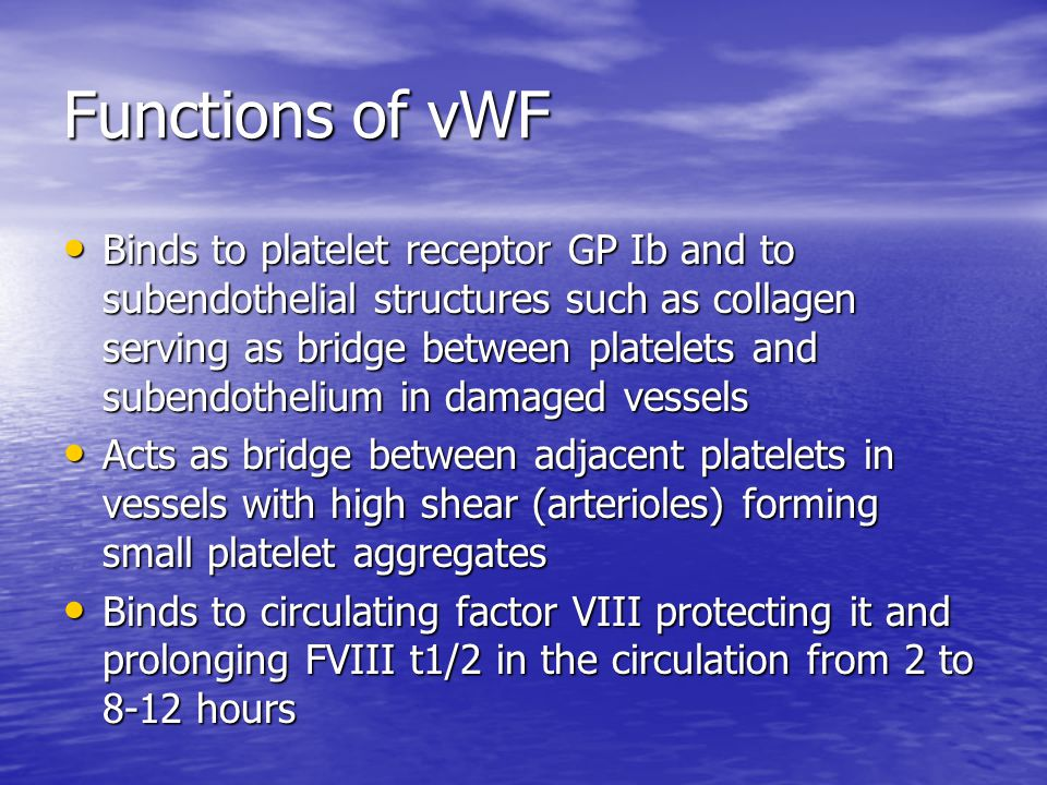 Functions of vWF Binds to platelet receptor GP Ib and to subendothelial structures such as collagen serving as bridge between platelets and subendothe