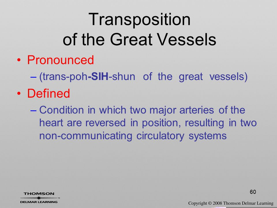 60 Transposition of the Great Vessels Pronounced –(trans-poh-SIH-shun of the great vessels) Defined –Condition in which two major arteries of the hear