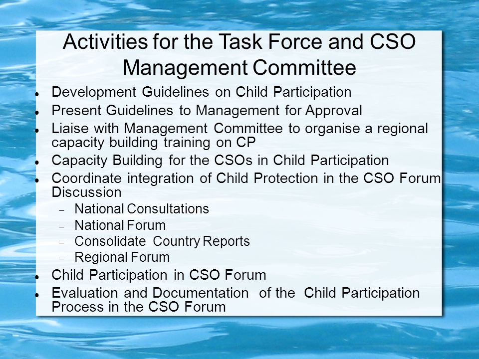 Activities for the Task Force and CSO Management Committee Development Guidelines on Child Participation Present Guidelines to Management for Approval