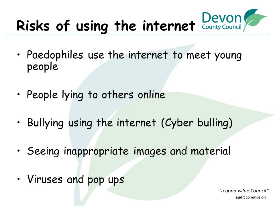 Risks of using the internet Paedophiles use the internet to meet young people People lying to others online Bullying using the internet (Cyber bulling