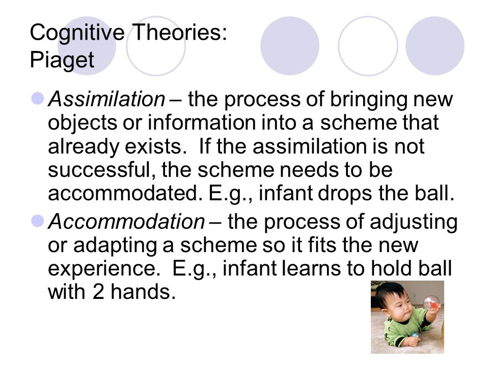 Cognitive Theories: Piaget Assimilation – the process of bringing new objects or information into a scheme that already exists. If the assimilation is