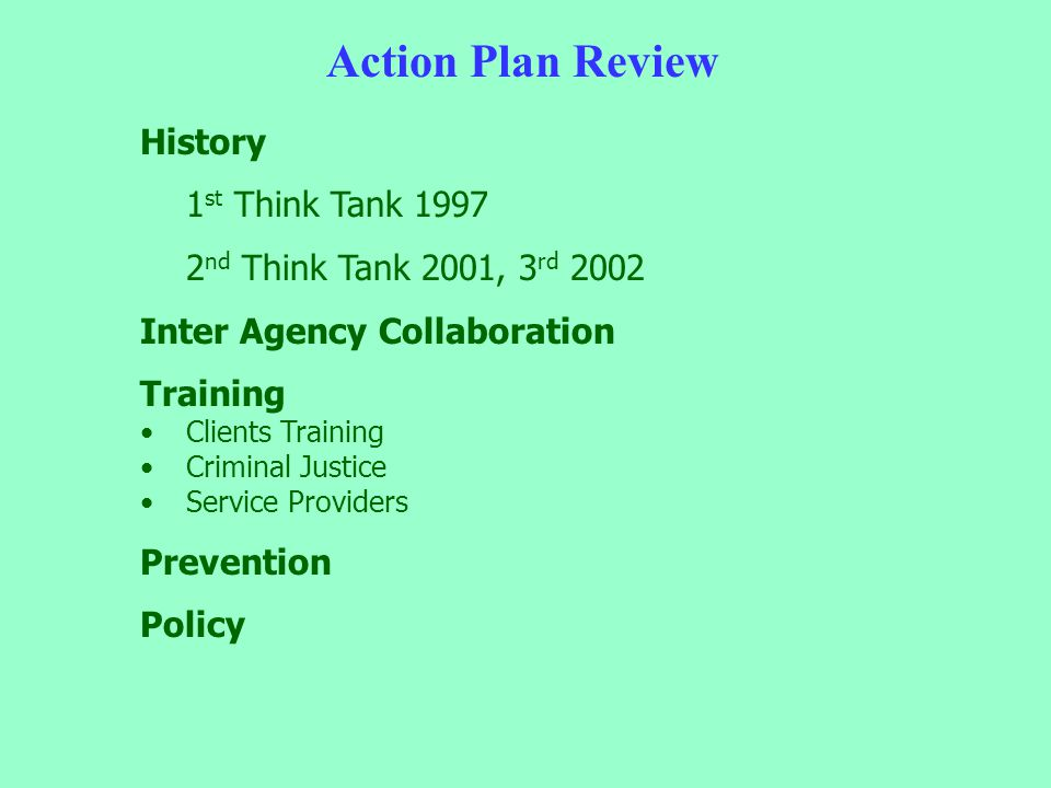 Action Plan Review History 1 st Think Tank 1997 2 nd Think Tank 2001, 3 rd 2002 Inter Agency Collaboration Training Clients Training Criminal Justice Service Providers Prevention Policy