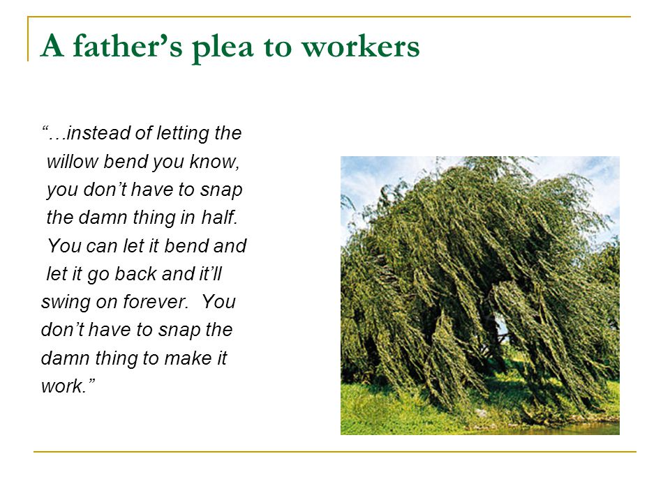 "A father's plea to workers ""…instead of letting the willow bend you know, you don't have to snap the damn thing in half. You can let it bend and let i"
