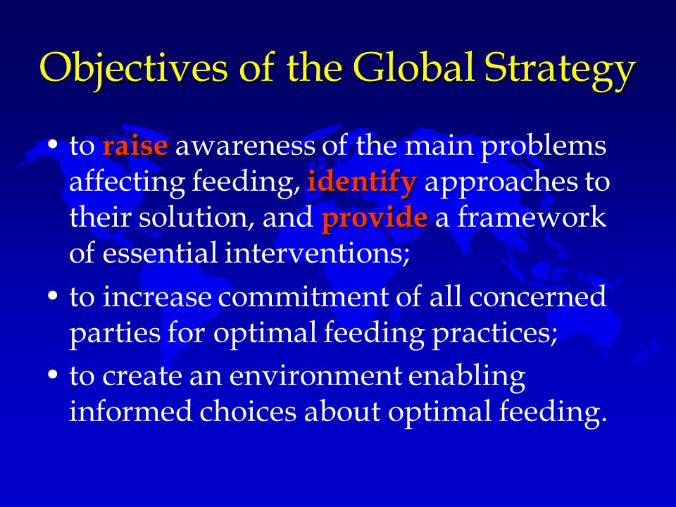 Objectives of the Global Strategy raise identify provideto raise awareness of the main problems affecting feeding, identify approaches to their soluti