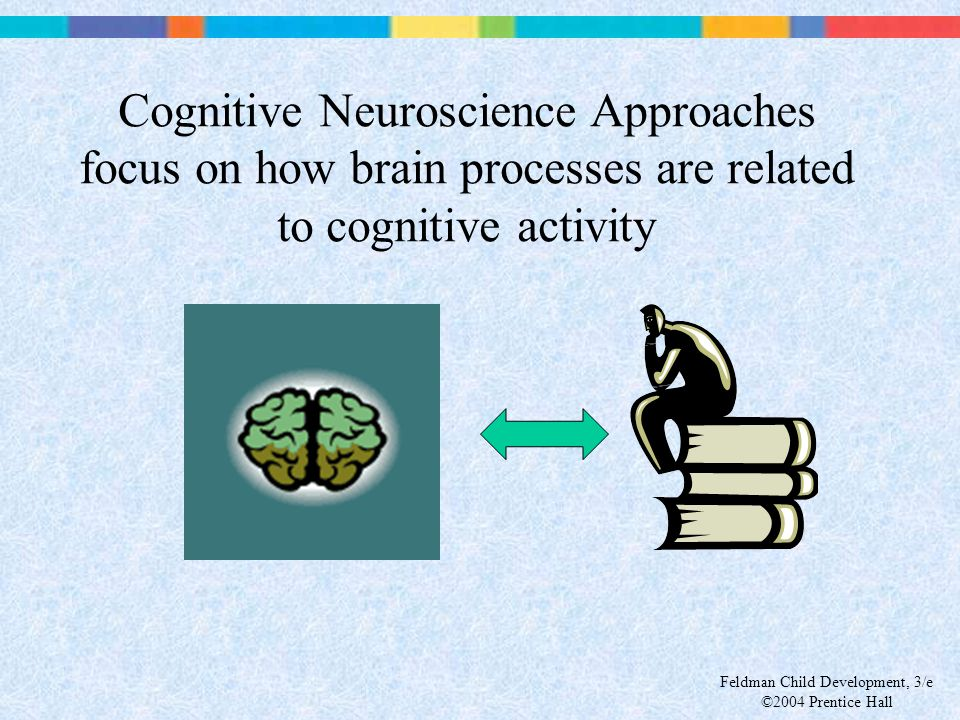 Feldman Child Development, 3/e ©2004 Prentice Hall Cognitive Neuroscience Approaches focus on how brain processes are related to cognitive activity