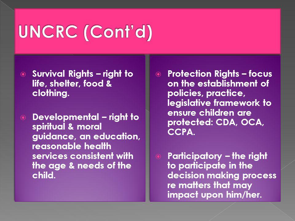 The Local Legislative Framework