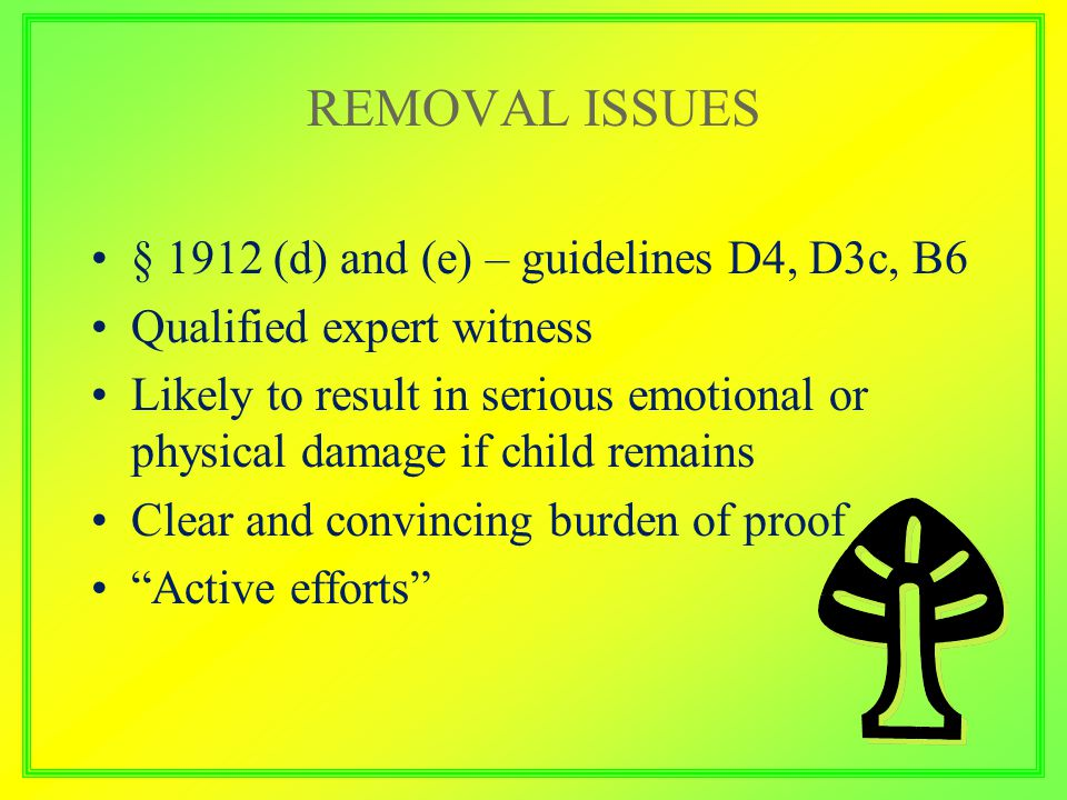 REMOVAL ISSUES § 1912 (d) and (e) – guidelines D4, D3c, B6 Qualified expert witness Likely to result in serious emotional or physical damage if child remains Clear and convincing burden of proof Active efforts