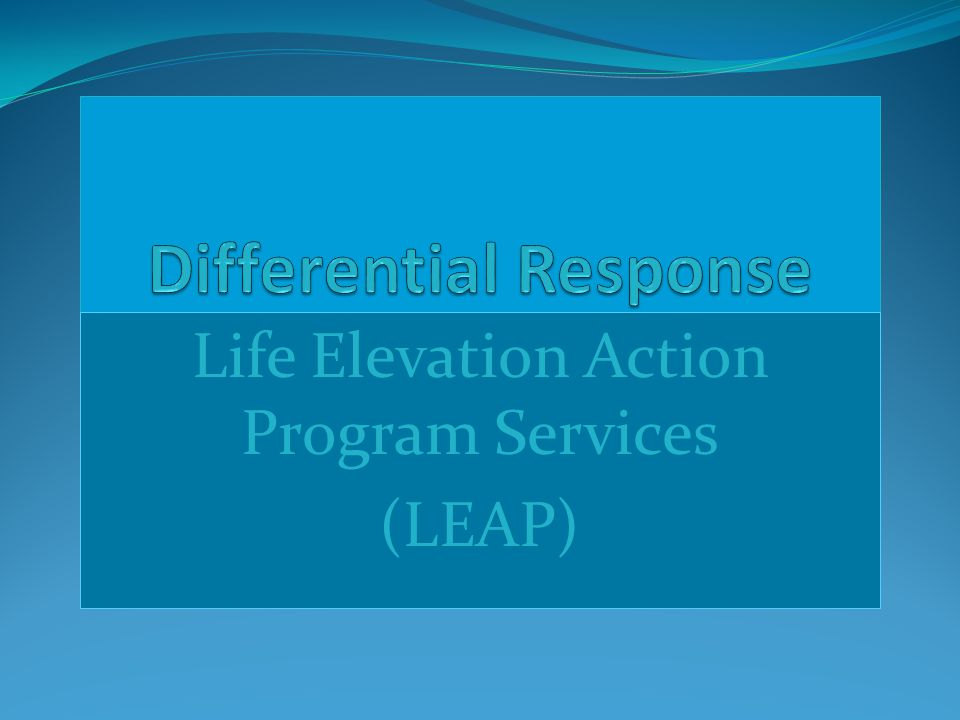 Life Elevation Action Program Services (LEAP)