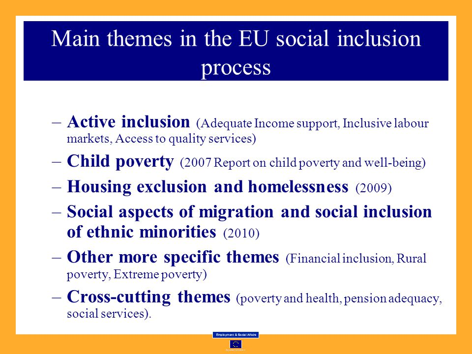 Main themes in the EU social inclusion process –Active inclusion (Adequate Income support, Inclusive labour markets, Access to quality services) –Child poverty (2007 Report on child poverty and well-being) –Housing exclusion and homelessness (2009) –Social aspects of migration and social inclusion of ethnic minorities (2010) –Other more specific themes (Financial inclusion, Rural poverty, Extreme poverty) –Cross-cutting themes (poverty and health, pension adequacy, social services).