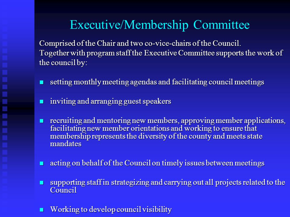 Executive/Membership Committee Comprised of the Chair and two co-vice-chairs of the Council. Together with program staff the Executive Committee suppo