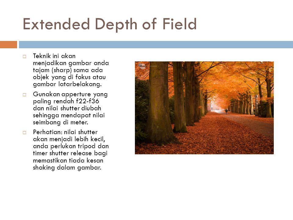 Extended Depth of Field  Teknik ini akan menjadikan gambar anda tajam (sharp) sama ada objek yang di fokus atau gambar latarbelakang.  Gunakan apper