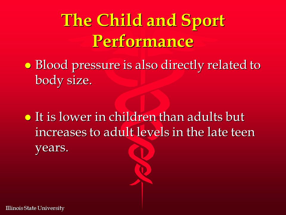Illinois State University The Child and Sport Performance l Blood pressure is also directly related to body size.