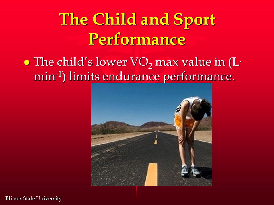 Illinois State University The Child and Sport Performance l The child's lower VO 2 max value in (L.