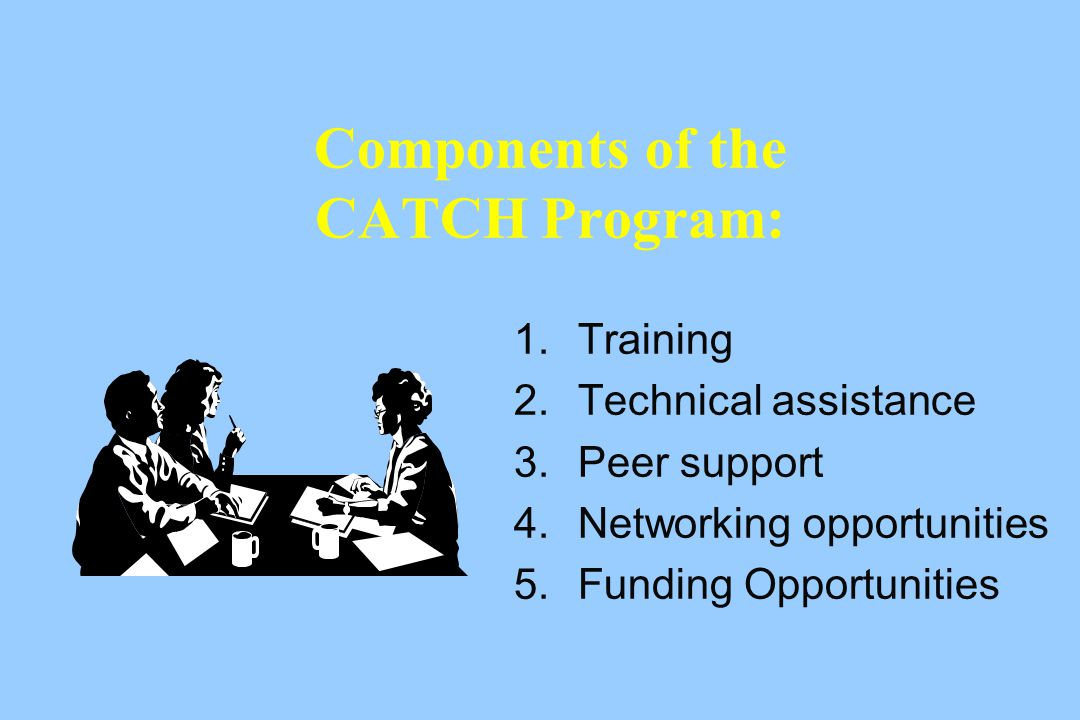 Components of the CATCH Program: 1.Training 2.Technical assistance 3.Peer support 4.Networking opportunities 5.Funding Opportunities