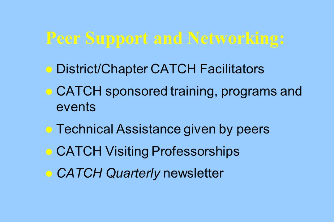 Peer Support and Networking: District/Chapter CATCH Facilitators CATCH sponsored training, programs and events Technical Assistance given by peers CATCH Visiting Professorships CATCH Quarterly newsletter