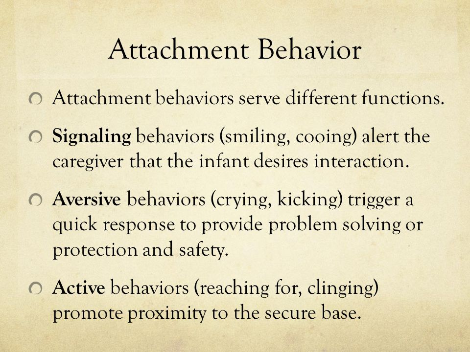 Attachment Behavior Attachment behaviors serve different functions.